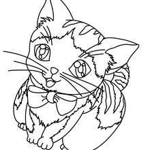 Desenho de um gatinho para colorir online