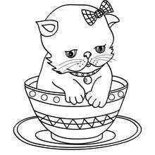 Desenho de um gatinho dento de uma tigela para colorir
