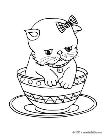Desenhos De Animais De Estimacao Para Colorir Desenhos Para