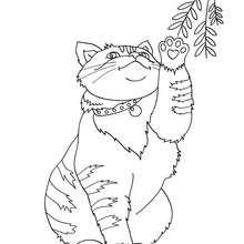 Desenho de um gatinho fofo para colorir