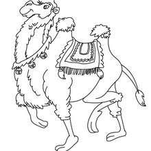 Desenho de um Camelo para colorir online