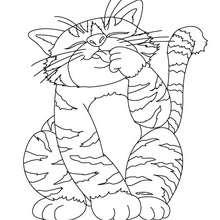 Desenho de um gato gordinho para colorir