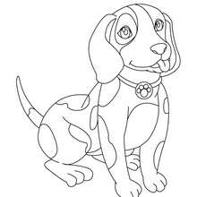 Desenho de um cachorrinho para colorir online