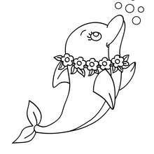 Desenho de um admirável golfinho para colorir