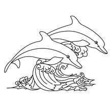 Desenho de golfinhos para colorir online