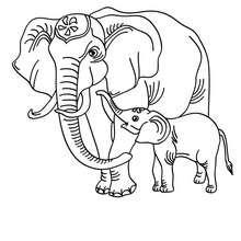 Desenho de um elefante para colorir online