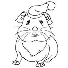 Desenho de um Porquinho-da-Índia com um chapél para colorir