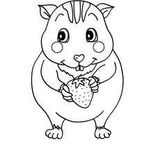 Desenho de um Hamster Kawaii para colorir