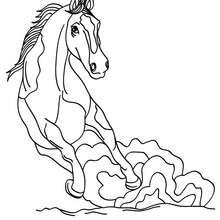 Desenho de um Cavalo selvagem para colorir