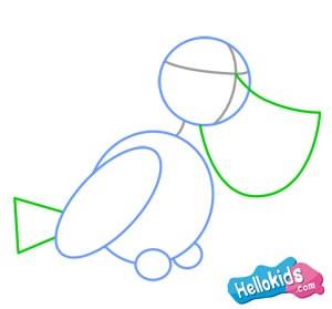 Como desenhar um PELICANO