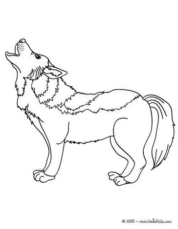 Desenho de um lobo para colorir online