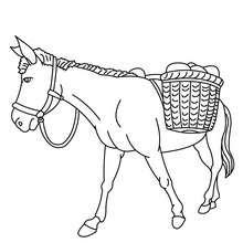 Desenho de um burro para colorir online