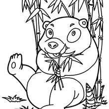 Desenho de uma Panda engraçado para colorir