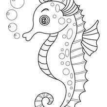 Desenho de um cavalo marinho para colorir online
