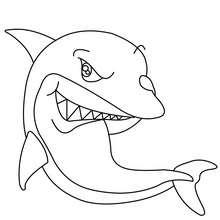 desenhos para colorir de desenho de um tubarão martelo para colorir
