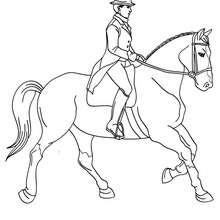 Desenho de uma mulher treinando o seu Cavalo para colorir