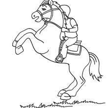 Uma criança montando a cavalo para colorir
