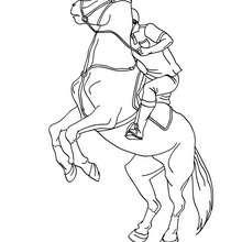 Uma homem montando a cavalo para colorir