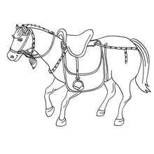 Desenho de um cavalo com sua sela para colorir