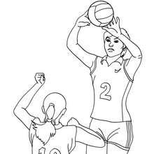 Desenho de um passe Voleibol  para colorir