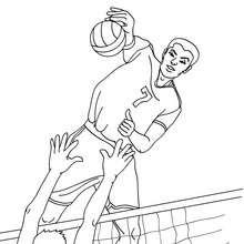 Desenho de um jogo Voleibol para colorir