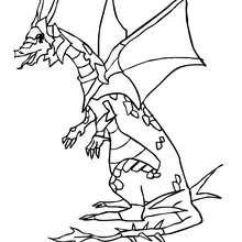 Desenho para colorir de um Dragão guerreiro