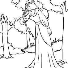 Desenho de uma fada na floresta para colorir