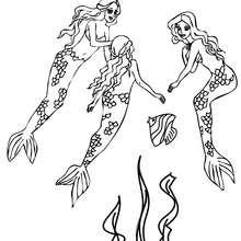 Desenho de um adorável grupo de sereias nadando para colorir