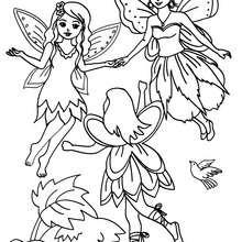 Desenho de fadas voando na floresta  para colorir