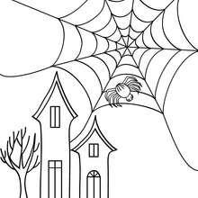 Desenho de uma teia de aranha do Dia das Bruxas para colorir