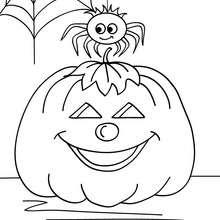 Desenho de uma teia de aranha e uma abóbora para colorir