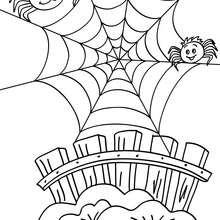 Desenho de uma teia de aranha engraçada para colorir