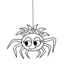 Desenho de uma linda aranha para colorir