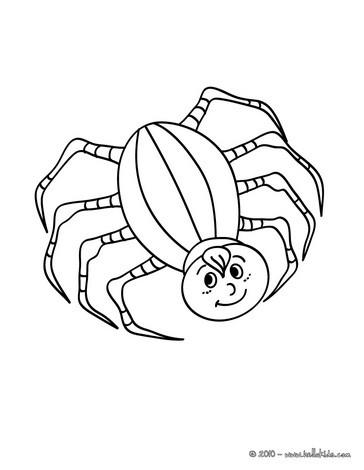 Desenhos Para Colorir De Desenho De Uma Aranha Do Halloween Em Uma