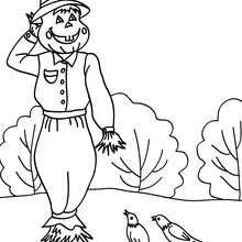 Desenho de um espantalho com passarinhos para colorir