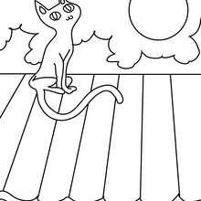 Desenho de um gato preto no luar para colorir
