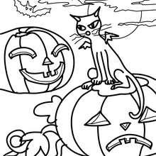 Desenho de um gato-morcego preto com uma abóbora para colorir