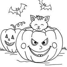 Desenho de uma abóbora com gatos e morcegos para colorir