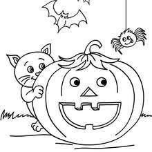 Desenho de uma abóbora com seus amigos do Dia das Bruxas para colorir