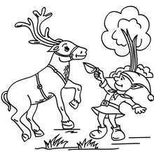 Desenho para colorir de um Duende de Natal dando comida para uma rena