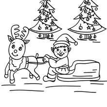 Desenho de um Duende treinando uma Rena antes da distribuição dos presentes para colorir