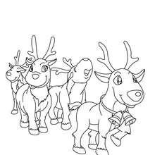 Desenho para colorir das Renas do Papai Noel prontas para a distribuição