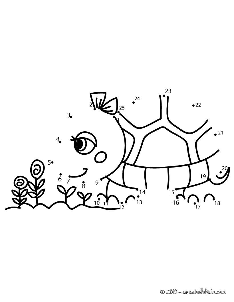Jogo de ligar os pontos - Tartaruga
