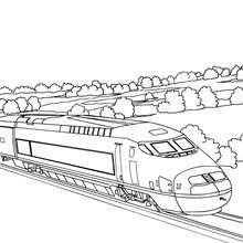 Desenho de um trem de alta velocidade na paisagem rural para colorir