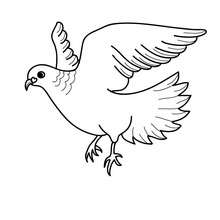 Desenho de um pombo do amor para colorir