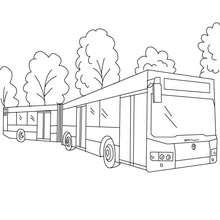 Desenho de um ônibus-sanfona para colorir