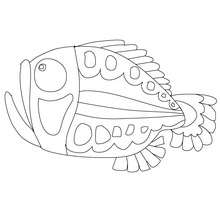 Desenho de um peixe medroso para colorir