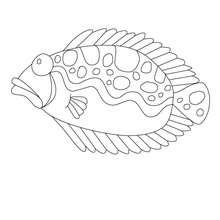Desenho de um peixe monstro para colorir