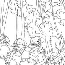 Desenho de bombeiros lutando contra o incêndio na floresta para colorir