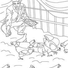 Desenho de um fazendeiro dando de comer as suas galinhas para colorir